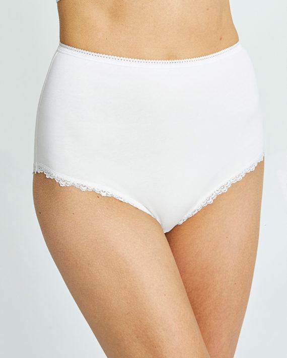 white-high-waist-briefs-4ba175db4b6b-1